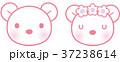 男女の熊 37238614