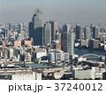 築地 築地市場 高層ビルの写真 37240012