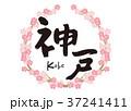 神戸 筆文字 桜 フレーム 37241411