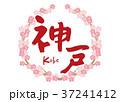 神戸 筆文字 桜 フレーム 37241412