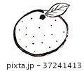 みかん 水彩画 37241413