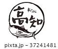 高知 筆文字 鰹のイラスト 37241481