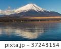 富士山 冠雪 山中湖の写真 37243154