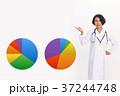 医療 案内 グラフ 37244748