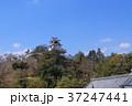 青空の高知城風景 37247441