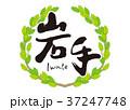 筆文字 青葉 新緑のイラスト 37247748