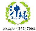沖縄 筆文字 青葉 フレーム 37247998