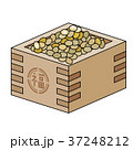節分 年中行事 豆のイラスト 37248212