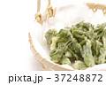たらの芽の天ぷら 37248872