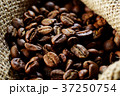 ロースト 珈琲豆 焙煎の写真 37250754