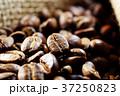 コーヒー豆 37250823