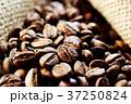 コーヒー豆 37250824