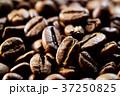 コーヒー豆 37250825