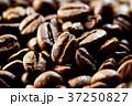 コーヒー豆 37250827