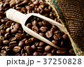 コーヒー豆 37250828