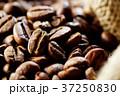 コーヒー豆 37250830