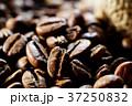 コーヒー豆 37250832
