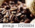 コーヒー豆 37250834