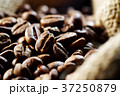 コーヒー豆 37250879