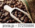 コーヒー豆 37250886
