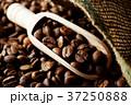 コーヒー豆 37250888