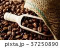 コーヒー豆 37250890
