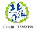 北海道 筆文字 青葉 フレーム 37262459