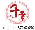 千葉 筆文字 桜 フレーム 37262650