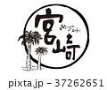 宮崎 筆文字 ソテツ フレーム 水彩画 37262651