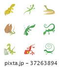 は虫類 ハ虫類 レプタイルのイラスト 37263894