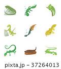 種類 は虫類 ハ虫類のイラスト 37264013