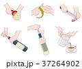 家事仕事 / 調理 37264902