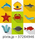 大洋 海 海原のイラスト 37264946