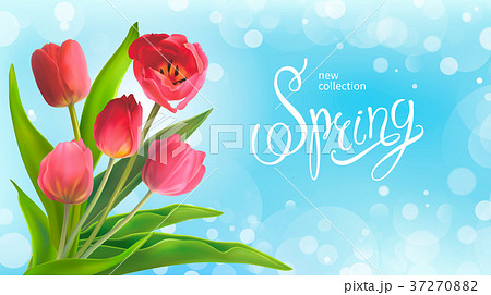 Spring bouguet of tulips 37270882