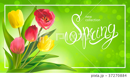 Spring bouguet of tulips 37270884