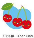 さくらんぼ 果物 親子のイラスト 37271309