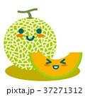 メロン マスクメロン 果物のイラスト 37271312