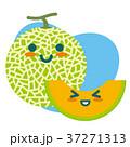メロン マスクメロン 果物のイラスト 37271313