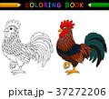 おんどり 酉 雄鶏のイラスト 37272206