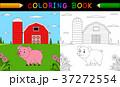 ぶた ブタ 豚のイラスト 37272554