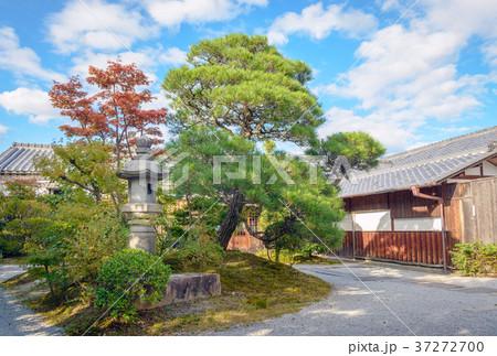 邸宅の美しい日本庭園 37272700