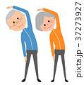老夫婦 シニア 体操のイラスト 37273927
