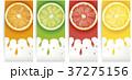 くだもの フルーツ 実のイラスト 37275156