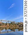 綿打池 池 風景の写真 37275300