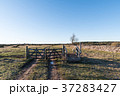 Old gate into a great plain landscape 37283427
