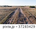 Country road in a barren landscape 37283429