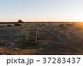 Stile by an unique landscape 37283437