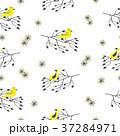 鳥 パターン 柄のイラスト 37284971