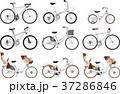 いろいろな種類の自転車のセット 37286846