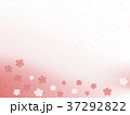 梅 和紙 背景のイラスト 37292822